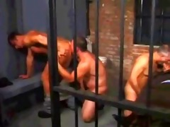 jailguys